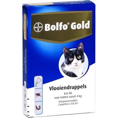 Bolfo Kat