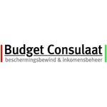 Budget Consulaat B.v. logo