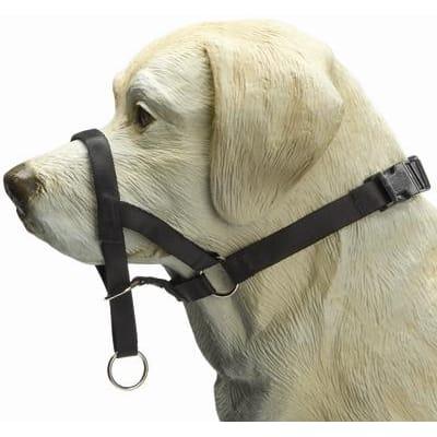 Dog Control Zwart M