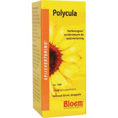 Polycula