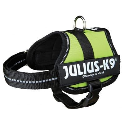 Julius K9 Lime tuig