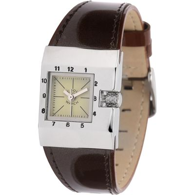 Coolwatch bruin