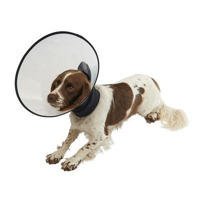 Buster premium collar beschermkap