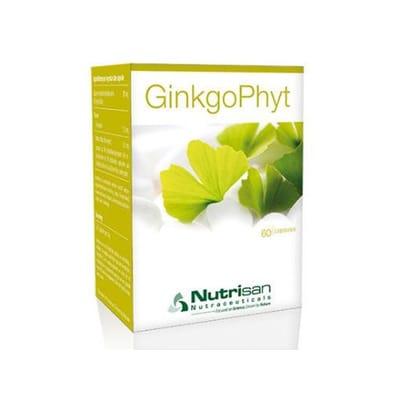 Ginkgophyt