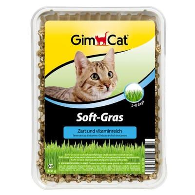 Soft Gras 100 gr