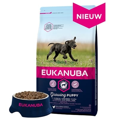 Eukanuba dog developingjunior large breed chicken