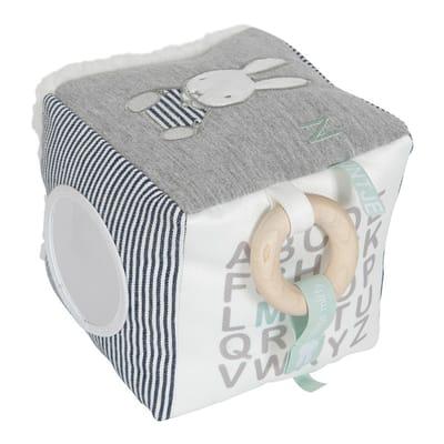 Nijntje ABC kubus