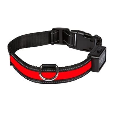 Halsband usb licht rood / zwart