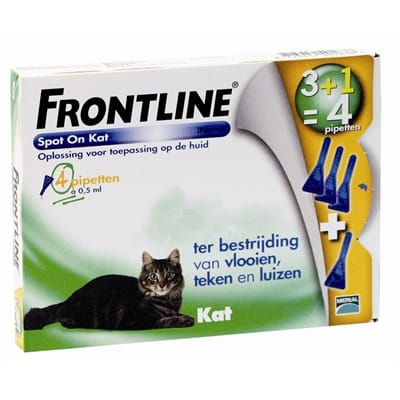 Frontline kat spot on