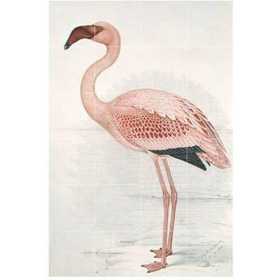 IXXI Wanddecoratie Flamingo x