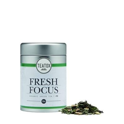 Vegan Thee Fresh Focus Green Tea Gingko