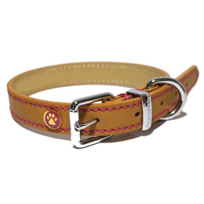 Luxury Leather Halsband Hond 20 CM