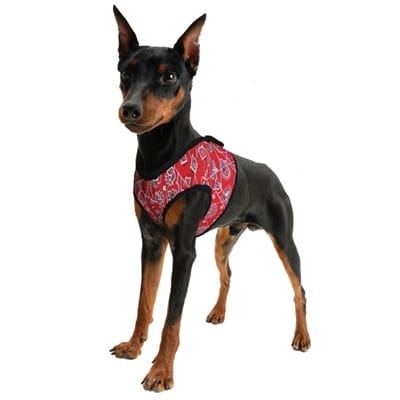 Aqua coolkeeper cooling comfy harness red western