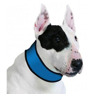 Halsband aqua coolkeeper pacific blue