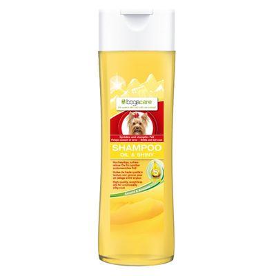 Bogacare shampoo oil&shiny