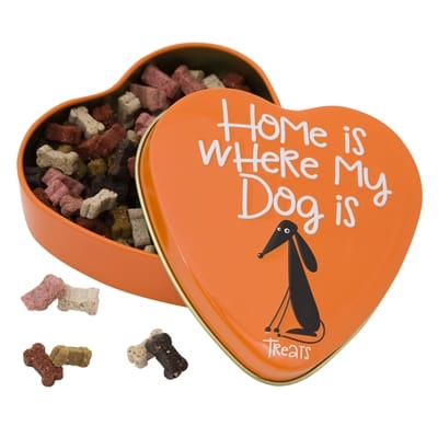 Home is where my dog