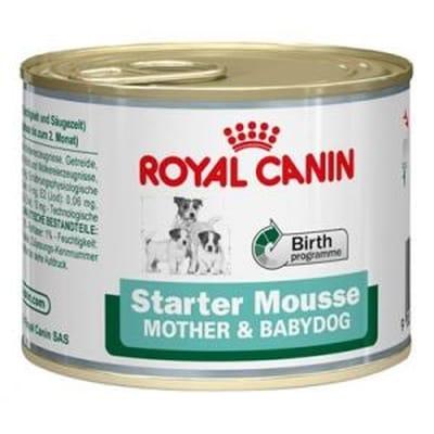 Royal canin starter mousse gr